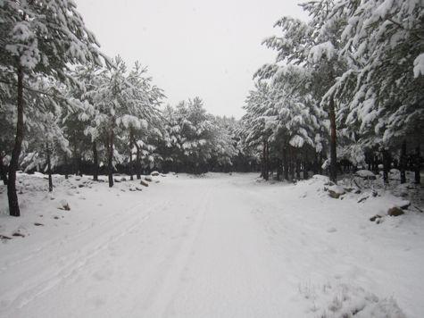 gredos snow